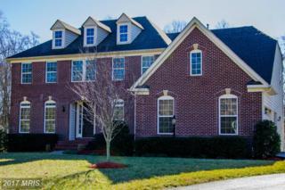 92 Scotts Ford Lane, Fredericksburg, VA 22406 (#ST9839942) :: LoCoMusings