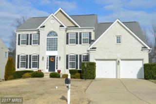 20 Crescent Valley Drive, Fredericksburg, VA 22405 (#ST9850499) :: LoCoMusings