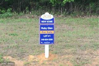 1 Ruby Glen Lane, Fredericksburg, VA 22405 (#ST9859659) :: Pearson Smith Realty