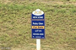 5 Ruby Glen Lane, Fredericksburg, VA 22405 (#ST9859662) :: Pearson Smith Realty
