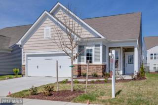 27 Point Bluff Street #0, Fredericksburg, VA 22406 (#ST9865913) :: Pearson Smith Realty