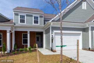 175 Long Point Drive #0, Fredericksburg, VA 22406 (#ST9873405) :: Pearson Smith Realty