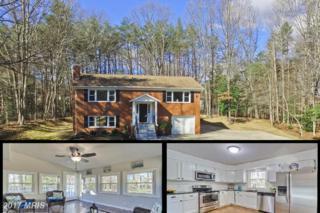 43 Green Leaf Terrace, Stafford, VA 22556 (#ST9877520) :: Pearson Smith Realty