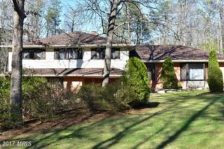 213 Brookewood Drive, Fredericksburg, VA 22405 (#ST9891574) :: Pearson Smith Realty