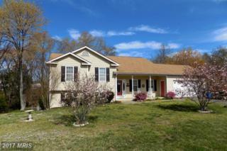 311 Edwards Drive, Fredericksburg, VA 22405 (#ST9898615) :: Pearson Smith Realty