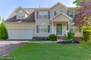 14 Live Oak Lane, Stafford, VA 22554 (#ST9919837) :: Pearson Smith Realty