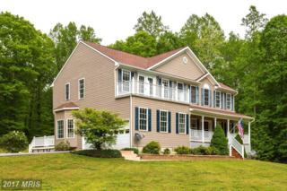 43 Tracey Lane, Fredericksburg, VA 22406 (#ST9931218) :: Pearson Smith Realty