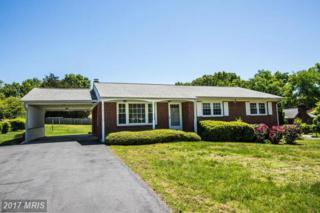 702 Culpeper Street, Fredericksburg, VA 22405 (#ST9937472) :: Pearson Smith Realty