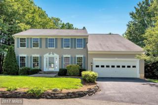 72 Village Grove Road, Fredericksburg, VA 22406 (#ST9952839) :: Pearson Smith Realty