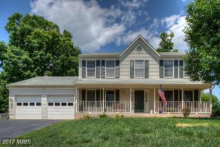 31 Baldwin Drive, Fredericksburg, VA 22406 (#ST9957227) :: Pearson Smith Realty