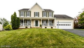 31 Basalt Drive, Fredericksburg, VA 22406 (#ST9959664) :: Pearson Smith Realty
