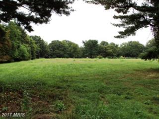 Arrowhead Trail, Easton, MD 21601 (#TA7673496) :: LoCoMusings