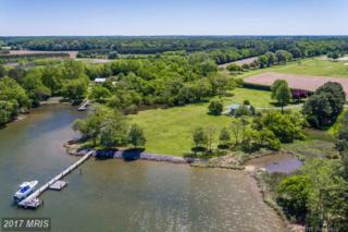 4000 Chamberlaine Cove Road, Trappe, MD 21673 (#TA9938285) :: Pearson Smith Realty