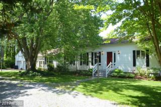 8060 Bozman Neavitt Road, Bozman, MD 21612 (#TA9941174) :: Pearson Smith Realty
