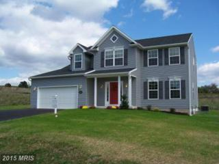18906 Island Drive, Hagerstown, MD 21742 (#WA8559455) :: Pearson Smith Realty