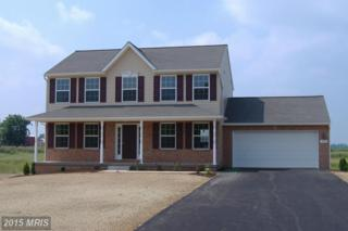 19865 Brownsville Road, Knoxville, MD 21758 (#WA8639121) :: Pearson Smith Realty