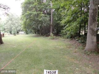 14530 Water Company Road, Cascade, MD 21719 (#WA8710464) :: Pearson Smith Realty