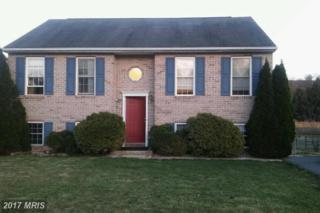 69 Amanda Drive, Smithsburg, MD 21783 (#WA9647609) :: LoCoMusings