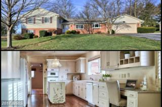 19602 Blossom Lane, Hagerstown, MD 21742 (#WA9821262) :: Pearson Smith Realty