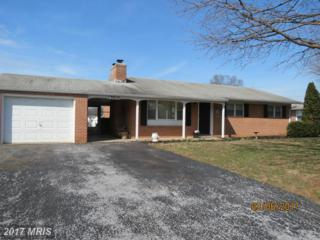 13910 Meadow Road N, Hagerstown, MD 21742 (#WA9845988) :: Pearson Smith Realty