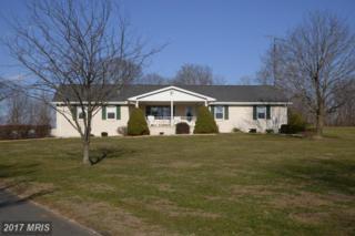 19111 Shepherdstown Pike, Keedysville, MD 21756 (#WA9847275) :: LoCoMusings