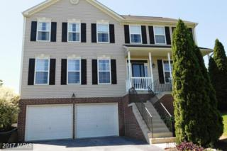 18001 Lyles Drive, Hagerstown, MD 21740 (#WA9847657) :: Pearson Smith Realty
