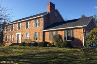 20210 Plumwood Drive, Hagerstown, MD 21742 (#WA9883492) :: Pearson Smith Realty