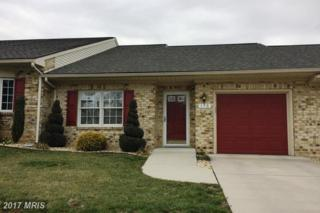 175 Sunbrook Lane #197, Hagerstown, MD 21742 (#WA9892067) :: Pearson Smith Realty