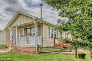 13924 Sweet Vale Drive, Hagerstown, MD 21742 (#WA9933981) :: Pearson Smith Realty