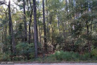 Wildwood Road, Colonial Beach, VA 22443 (#WE9502870) :: Pearson Smith Realty