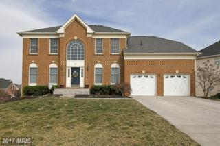 954 Meadow Court, Winchester, VA 22601 (#WI9874720) :: LoCoMusings