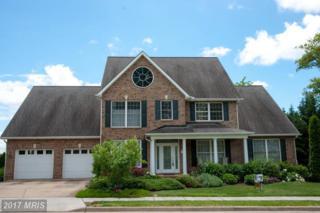 725 Chelsea Drive, Winchester, VA 22601 (#WI9894045) :: Pearson Smith Realty