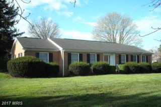 300 Marion Street, Winchester, VA 22601 (#WI9905162) :: Pearson Smith Realty