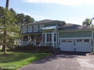 11662 Maid At Arms Lane, Berlin, MD 21811 (#WO9784605) :: Pearson Smith Realty