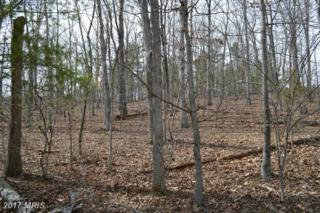 Panhandle Road, Front Royal, VA 22630 (#WR9585628) :: Pearson Smith Realty