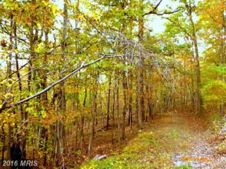 LOT 67 Brandy Road, Front Royal, VA 22630 (#WR9596350) :: Pearson Smith Realty