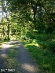 Byers Lane, Front Royal, VA 22630 (#WR9684561) :: LoCoMusings