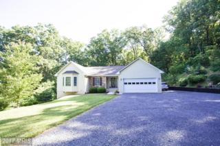 493 Gimlet Ridge Road, Bentonville, VA 22610 (#WR9736167) :: LoCoMusings