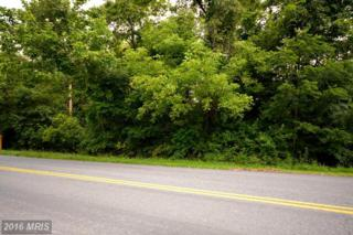 Lot 13 Howellsville Road, Front Royal, VA 22630 (#WR9741669) :: Pearson Smith Realty