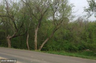 Howellsville Road, Front Royal, VA 22630 (#WR9742014) :: LoCoMusings