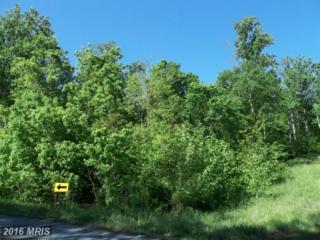 Buck Mountain Road, Bentonville, VA 22610 (#WR9751823) :: Pearson Smith Realty