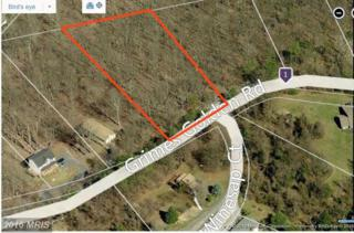 Grimes Golden Road, Linden, VA 22642 (#WR9807025) :: Pearson Smith Realty