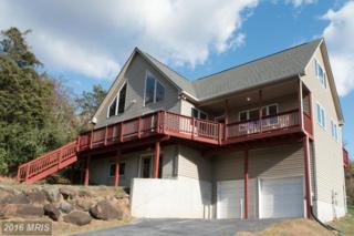 176 Wealthy Road, Linden, VA 22642 (#WR9808429) :: Pearson Smith Realty