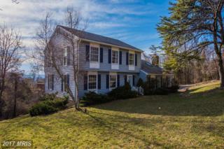 99 Wealthy Road, Linden, VA 22642 (#WR9822728) :: Pearson Smith Realty