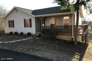 445 Overlook Drive, Front Royal, VA 22630 (#WR9831866) :: LoCoMusings