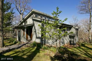 115 Mountain Top Road, Front Royal, VA 22630 (#WR9924102) :: Pearson Smith Realty