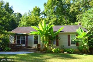 146 View Drive, Front Royal, VA 22630 (#WR9946466) :: Pearson Smith Realty