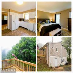 425 Worlds End Lane, Linden, VA 22642 (#WR9955918) :: Pearson Smith Realty