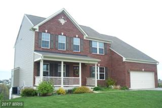 63 Flanders Court, Hanover, PA 17331 (#YK9880567) :: Pearson Smith Realty