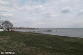 Central Drive S, Tracys Landing, MD 20779 (#AA9591841) :: Pearson Smith Realty